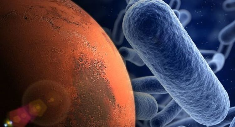 Mars Biyolojik Yaşam
