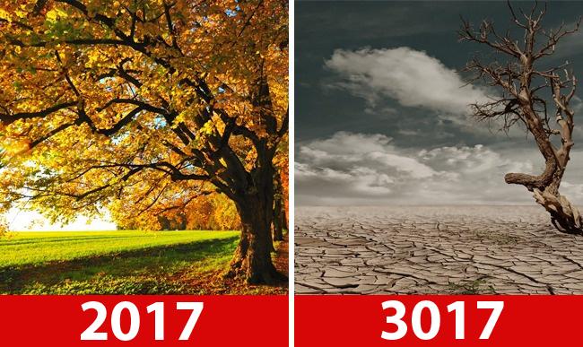 İnsan yapımı dünya ve doğa. Doğaya kim yardım edecek