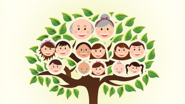 Soy Ağacında 1300lü Yıllara Kadar Ulaşmak Mümkün