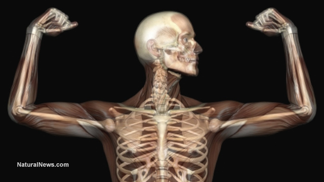 İnsan Vücudu ile İlgili Tuhaf 15 Bilgi