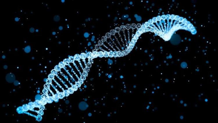 Bilim İnsanları, DNA'dan Yaşam Süresini Hesaplamaya Çalışıyor