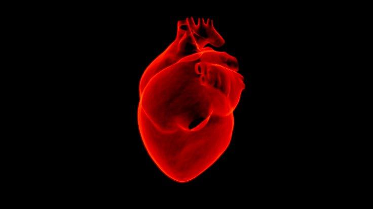 domuzdan insana kalp nakli