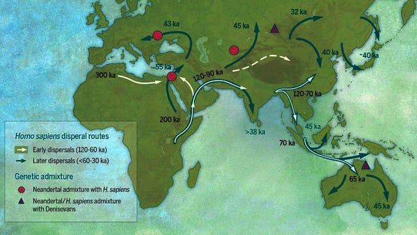 afrikadan göç