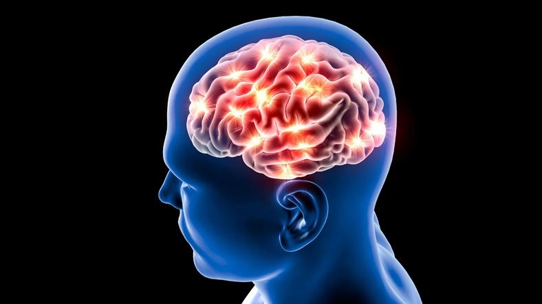 beyin aktivitesi