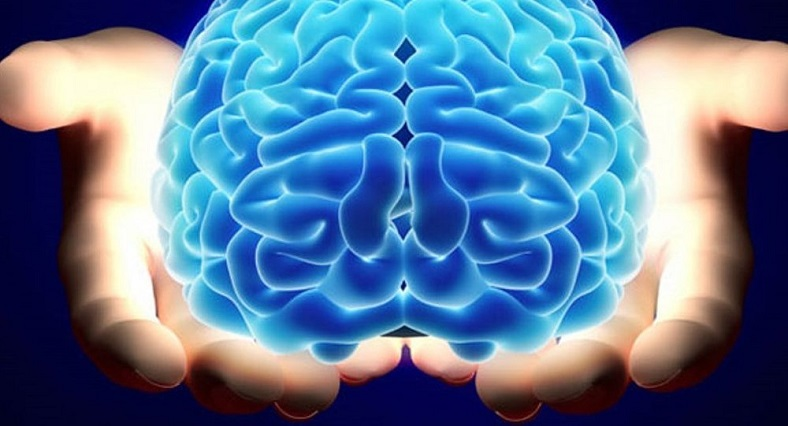 mini beyin bilim