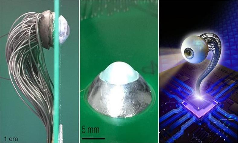 robotik yapay göz