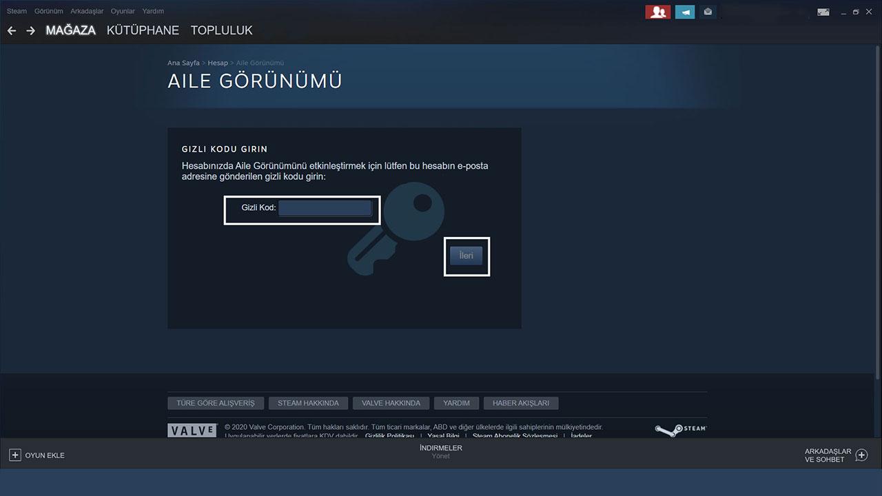 steam gizli kod