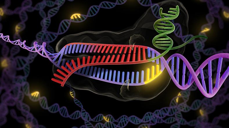 gen hataları