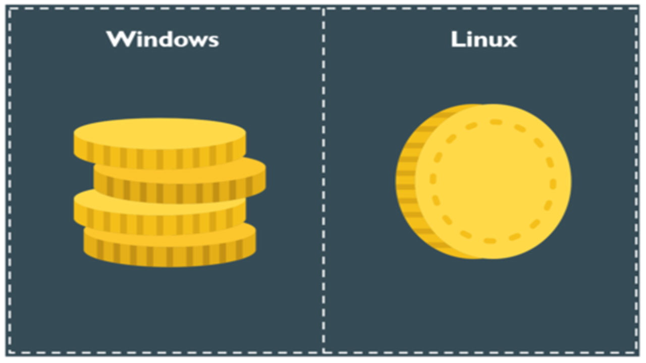 windows vs linux para