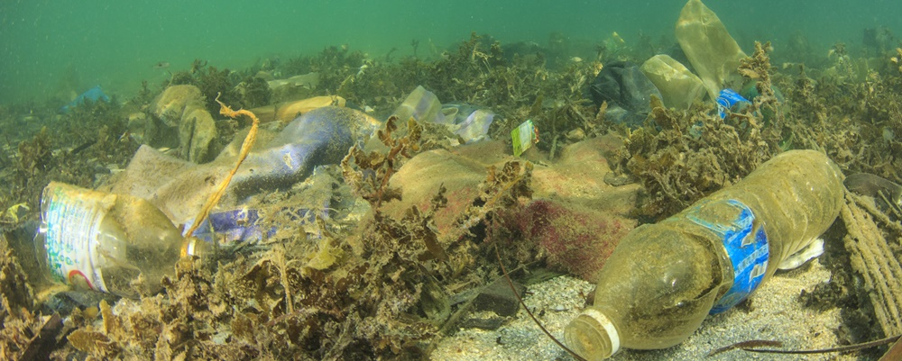 plastik kirliliği, okyanus plastik kirliliği, deniz atılan pet şişe