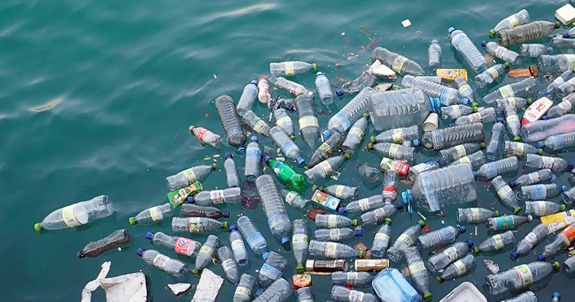 plastik kirliliği, okyanusta plastik kirliliği, denize atılan pet şişeler
