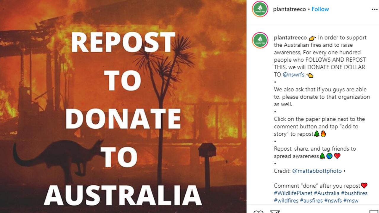 Plant A Tree Avustralya orman yangınları