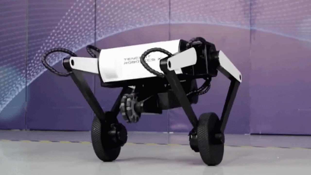 Havada Ters Takla Atabilen Üç Bacaklı Robot Köpek: Karşınızda Ollie [Video]