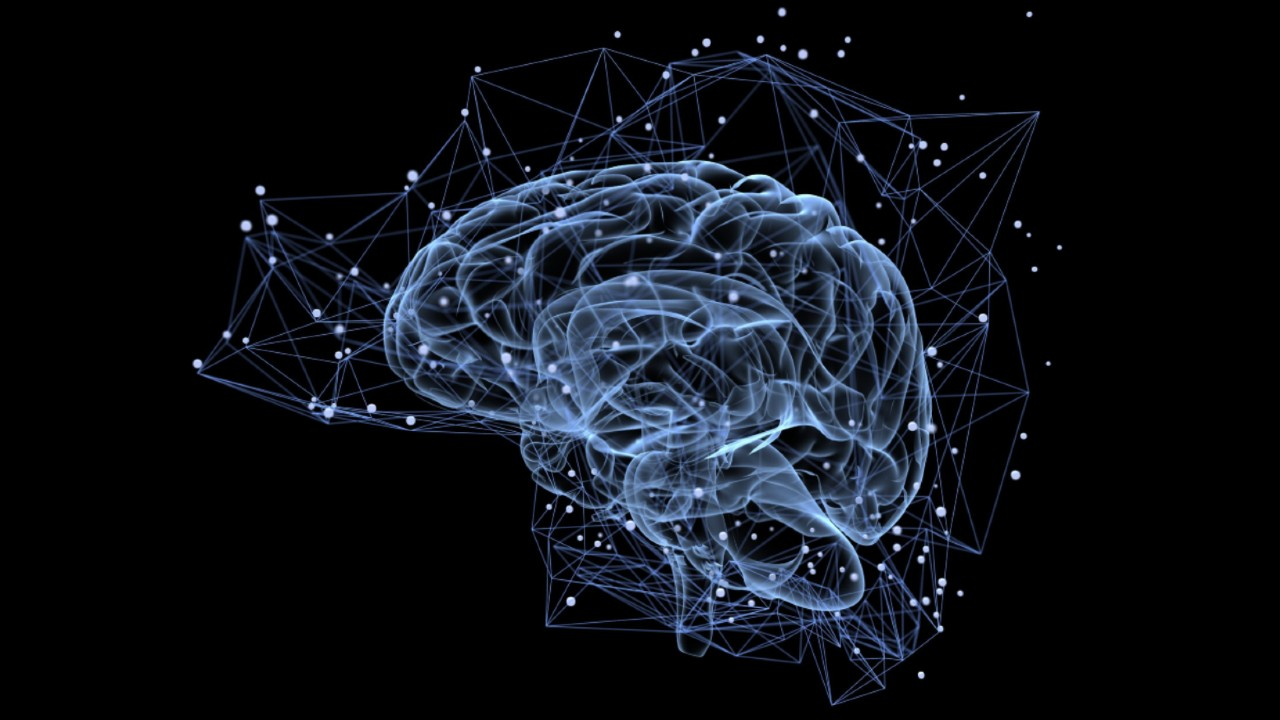 How to Increase the Secretory Protein BDNF in the Brain? 4