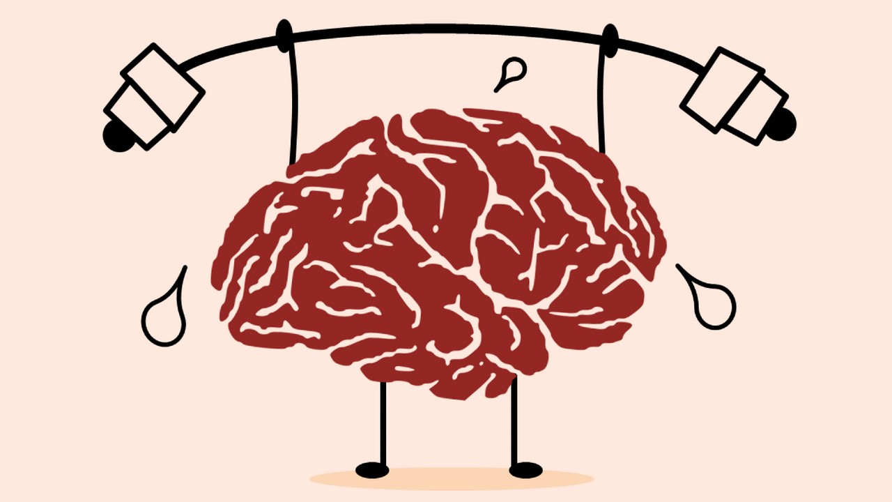 How to Increase the Secretory Protein BDNF in the Brain? 7