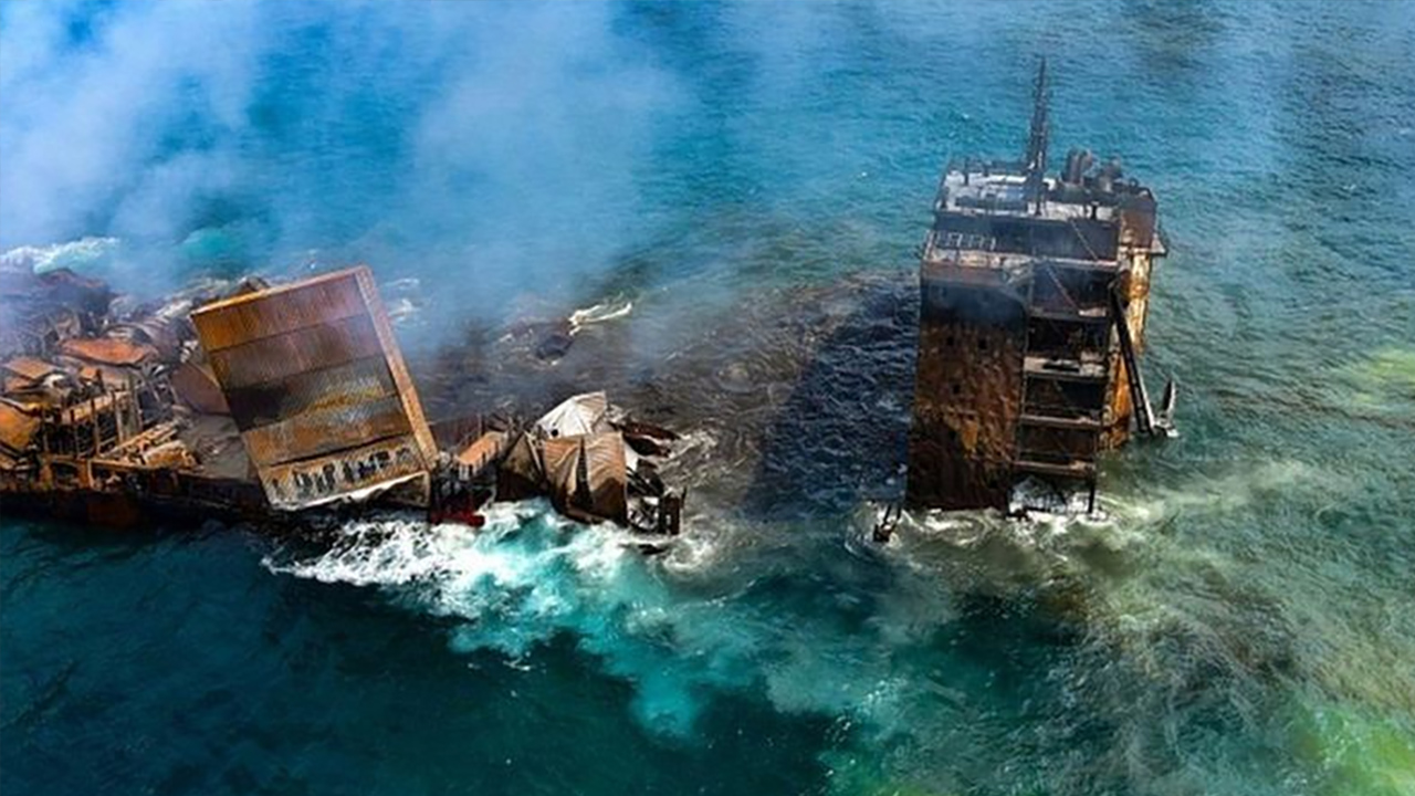 Ship Loaded With Chemical Cargo Sank, Dead Creatures Beached 3