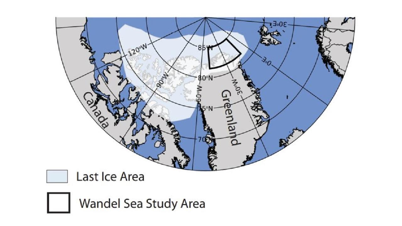 Son buz bölgesi eriyor