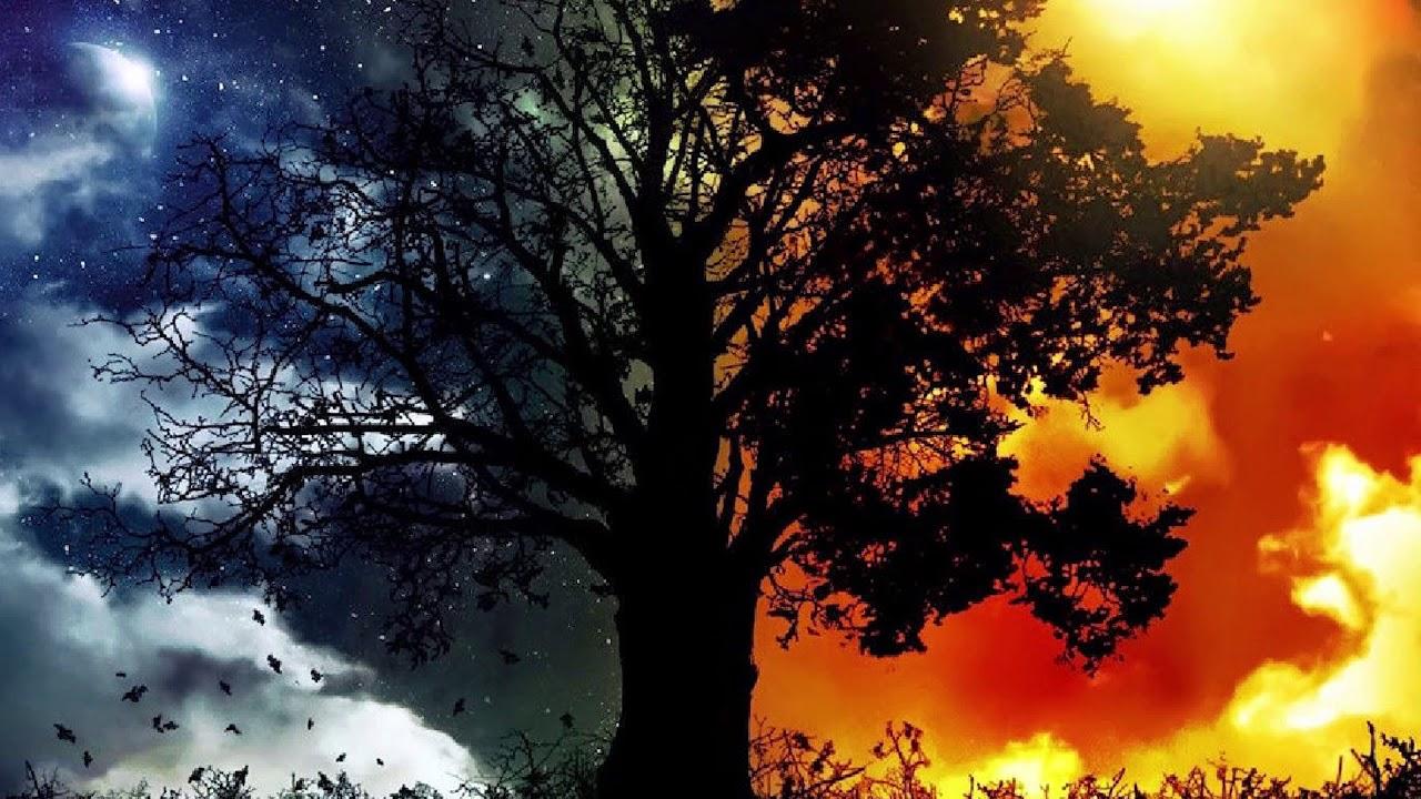 Mistik Mesajlar mı, Dünya'nın Dönüşü mü? Neden Rüya Görüyoruz?