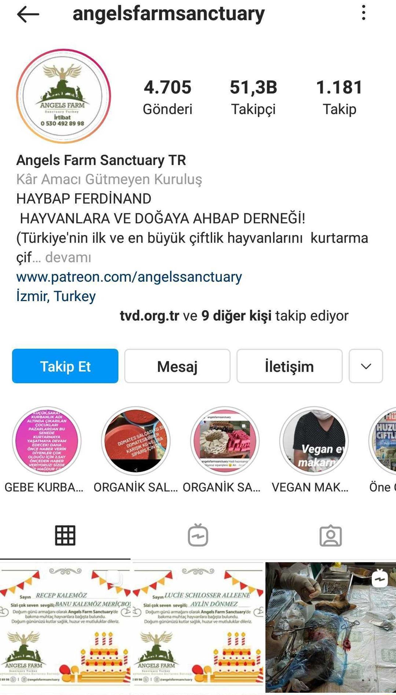angels farm