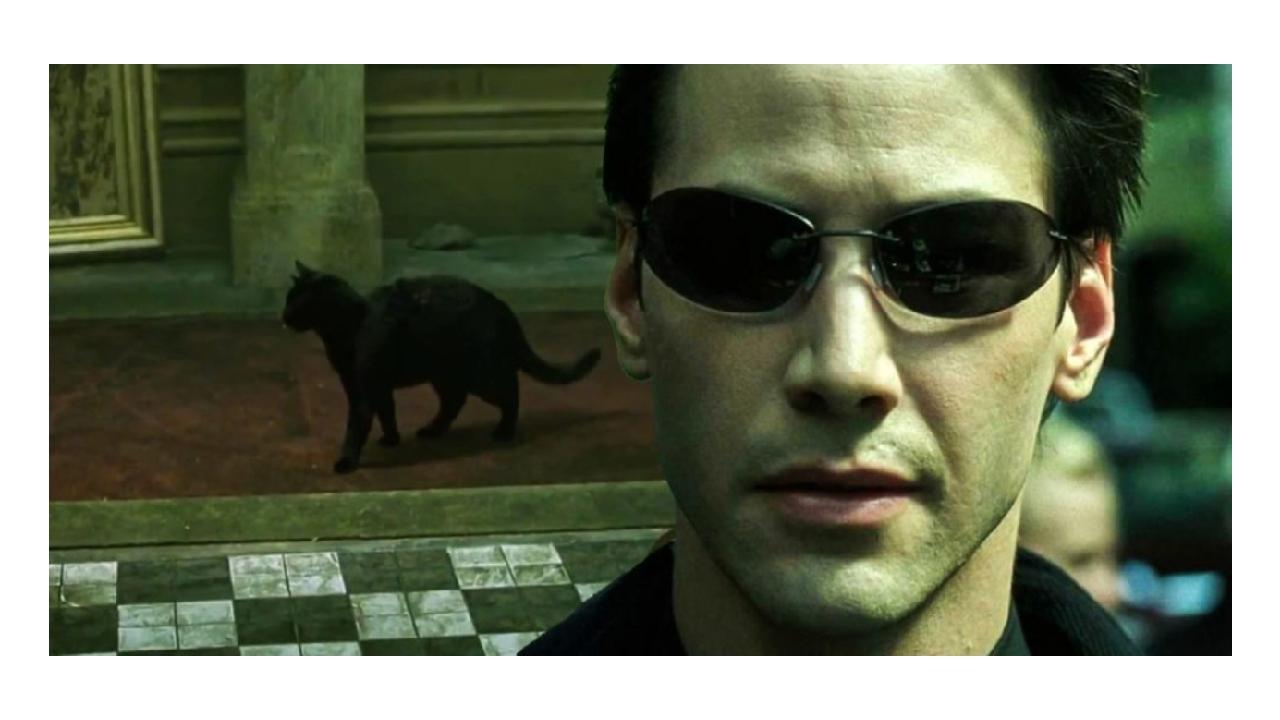 'Matrix' deja vu sahnesi