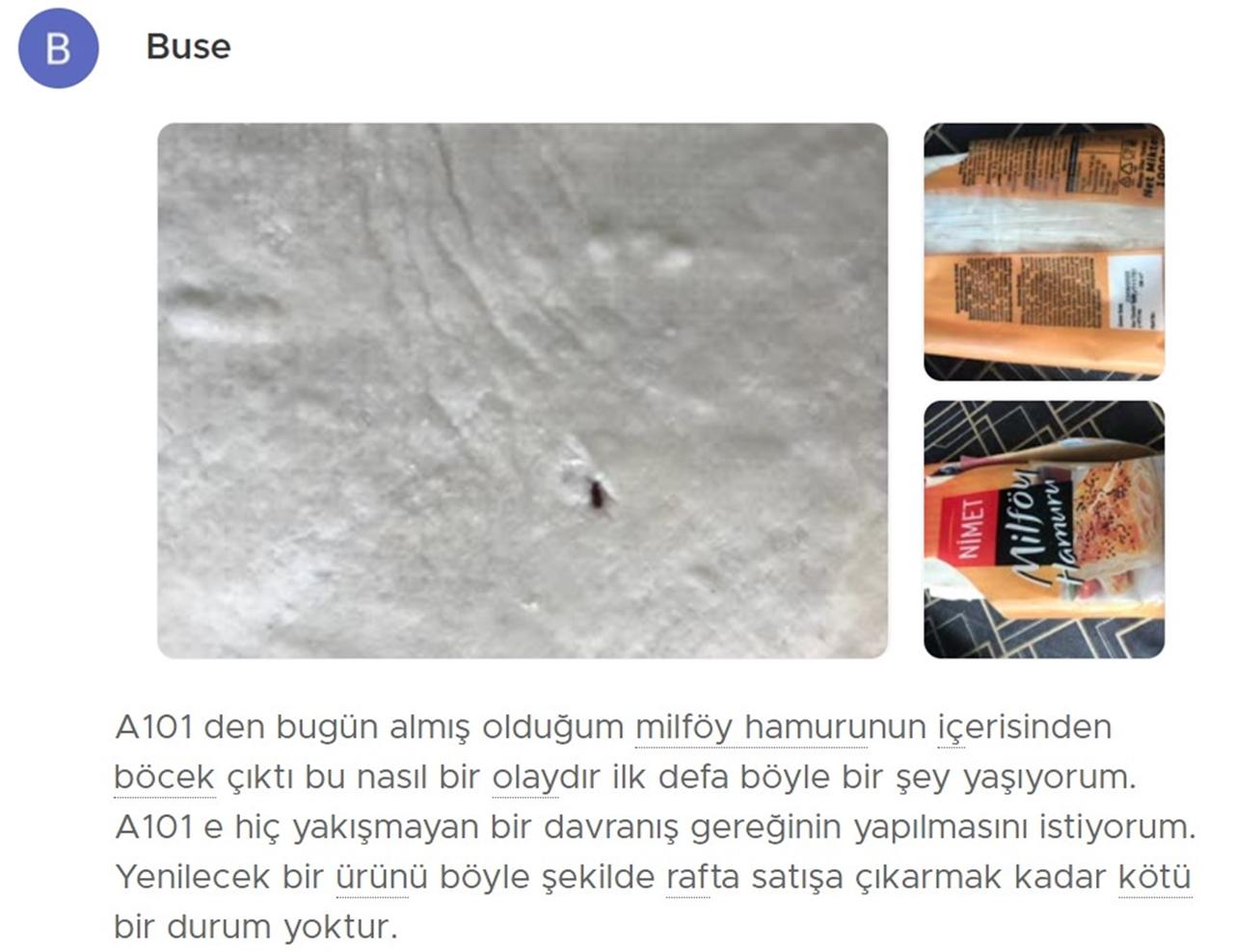 milföy böcek
