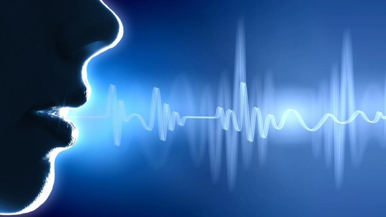 Ses değiştirme